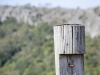 Web Wood post